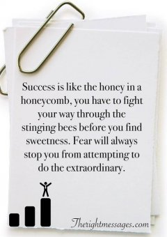 Success is like the honey in a honeycomb