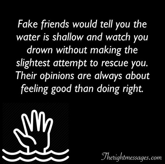 Fake friends would tell you