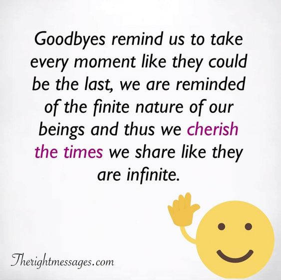 Goodbyes remind us to take every moment