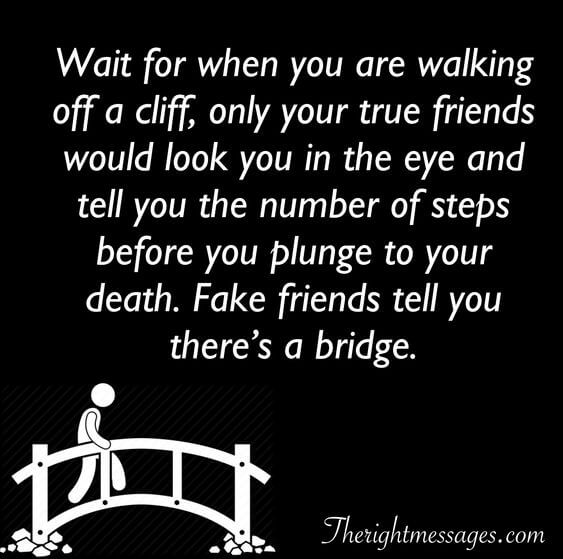 Wait for when you are walking off a cliff fake friend quote