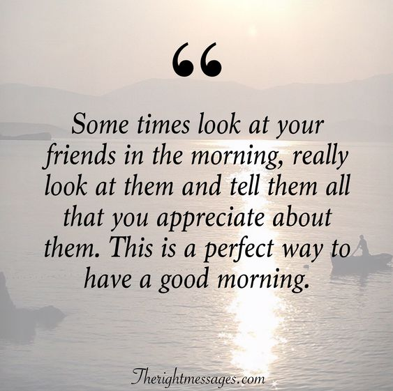 friends in the morning quote
