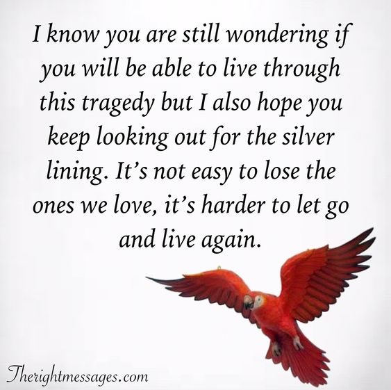 it's harder to let go and live again.