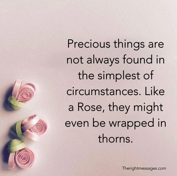 Like a Rose, they might even be wrapped in thorns.