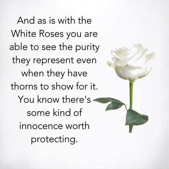 White Roses you are able to see the purity