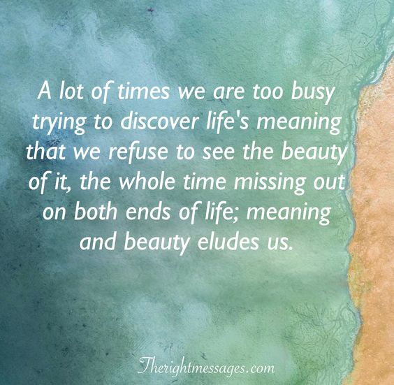 discover life quote