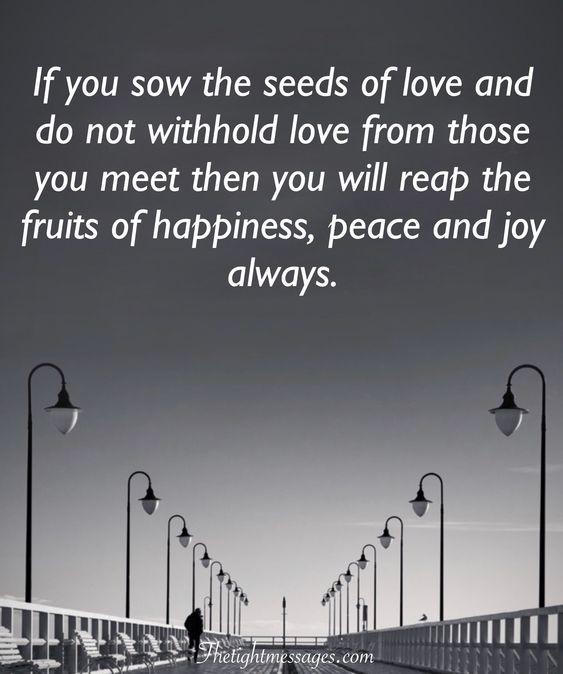 the seeds of love quote